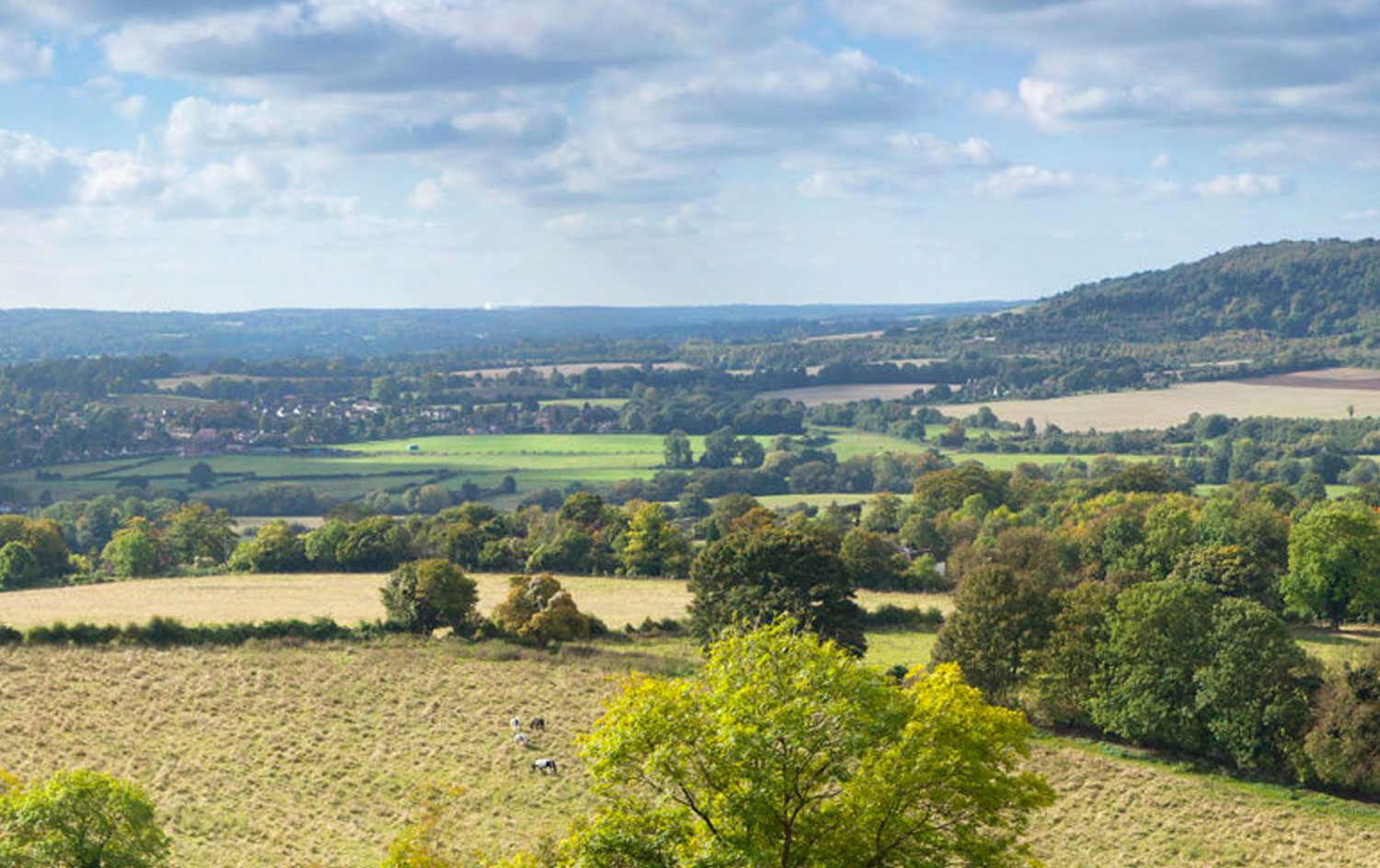 A view of the Darent Valley