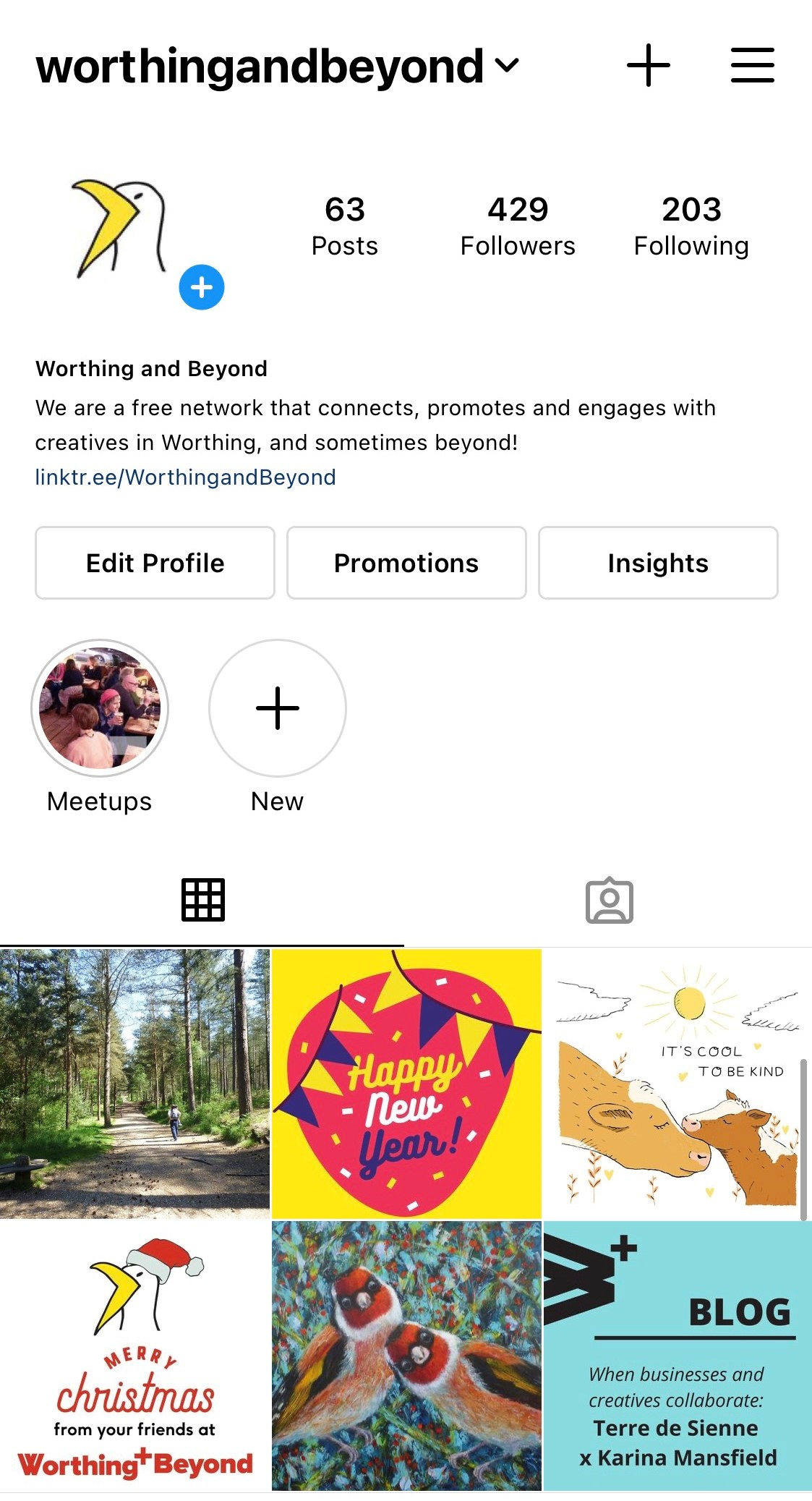 The Worthing & Beyond Instagram grid, showing the follower count of 429 and 6 of the most recent images