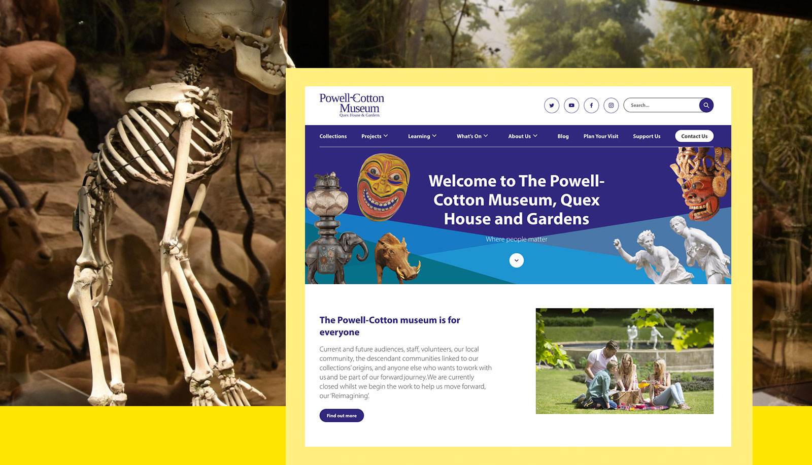 Screenshot of the Powell-Cotton Museum website overlaid on a photo of an exhibition of animals at the museum.