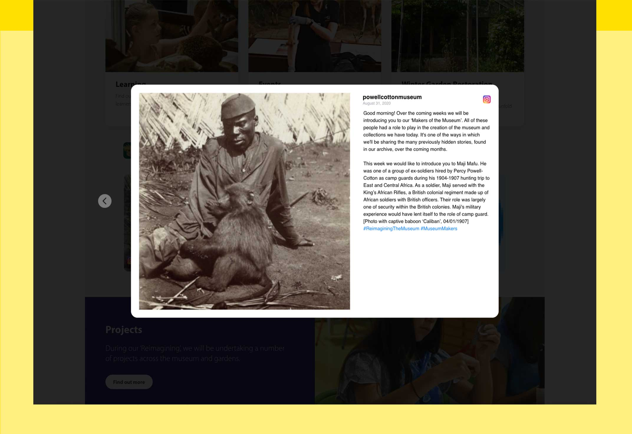 Screenshot of a featured social media post on the Powell-Cotton Website