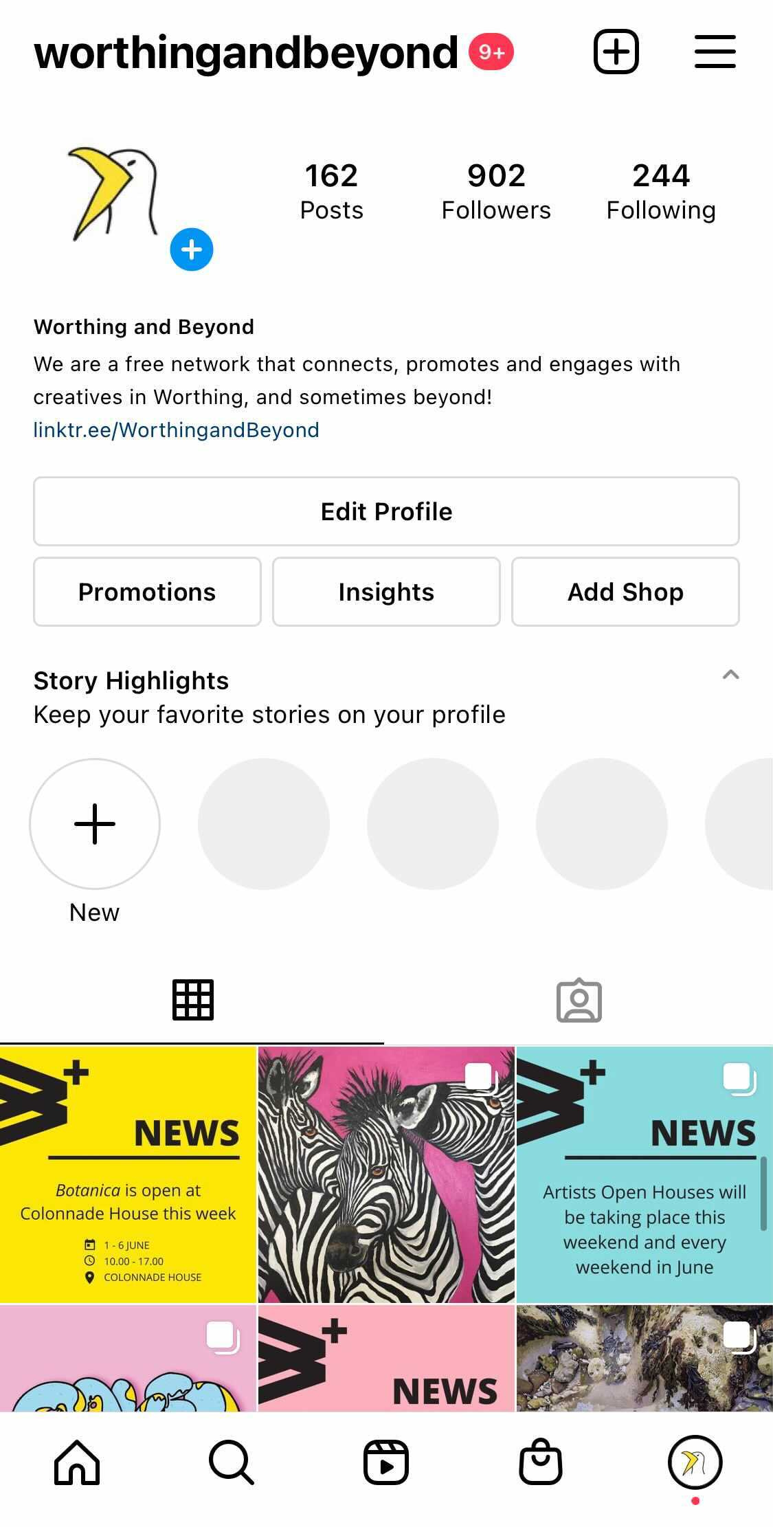 The @WorthingandBeyond Instagram grid as of 3/6/21